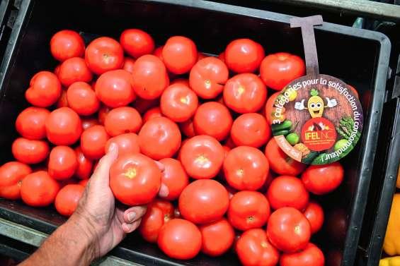 Premiers retours positifs sur la classification des fruits et légumes