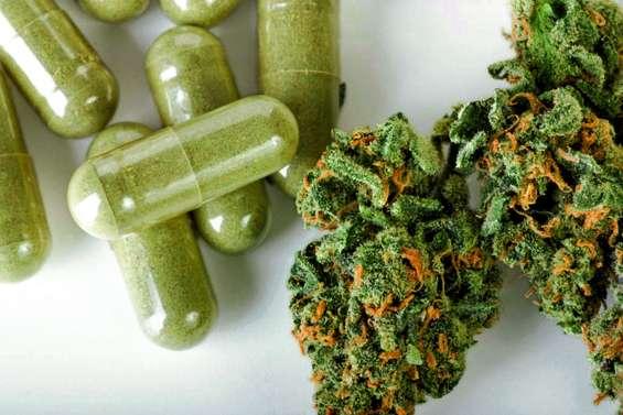 La pertinence du cannabis thérapeutique à l'étude