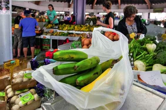 Le Cese approuve le projet de loi  contre les sacs plastique
