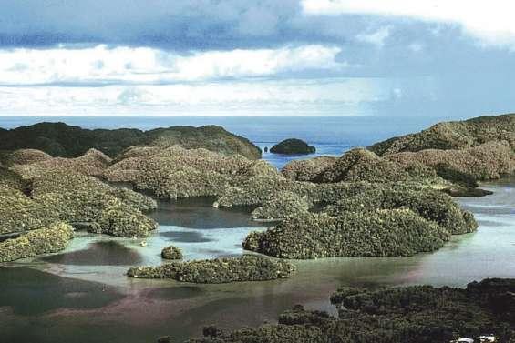 Les Palaos, premier Etat à interdire les crèmes solaires