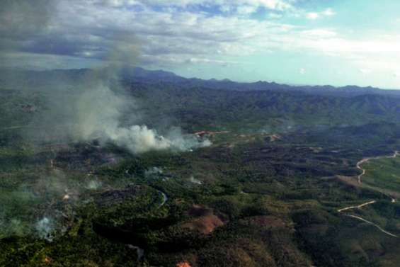 Plus de 800 hectares de forêt dévastés à Ouégoa