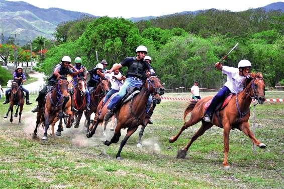 Ouégoa va fêter le cheval samedi