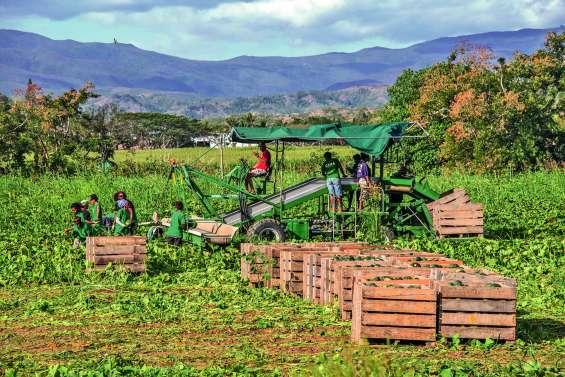 EPLP dénonce l'organisation de l'Agence rurale
