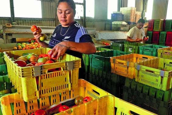Vers des prix plus justes pour les fruits et légumes ?