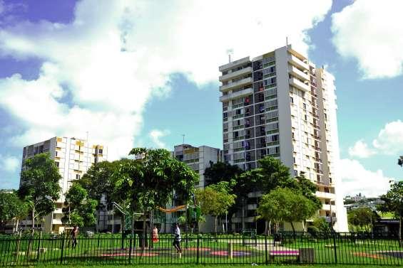 Défisc': l'Assemblée favorable aux croisières et à la rénovation du logement social