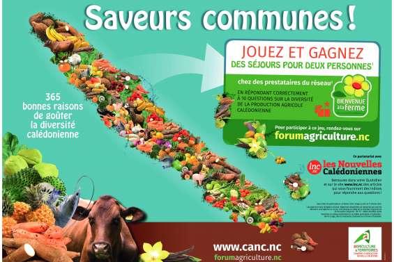 Un jeu pour soutenir l'agriculture locale