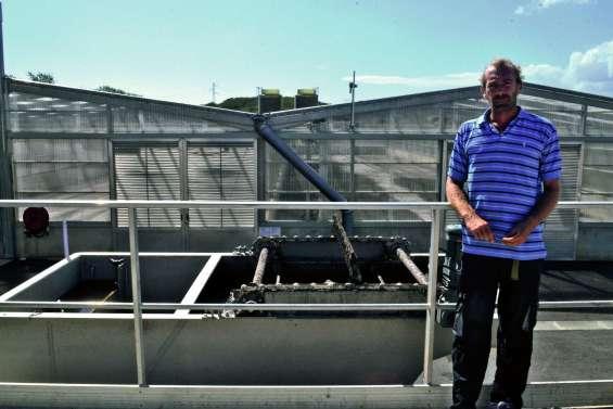 La filière « séchage solaire » d'ESS reprend du service la semaine prochaine