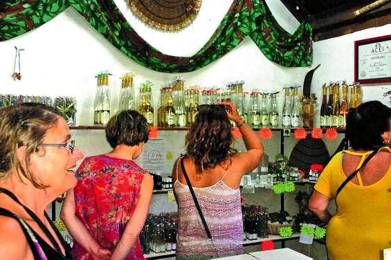 La distillerie de Boulouparis cherche un repreneur