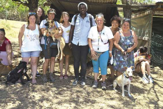 Une cinquantaine de visiteurs à la matinée adoption de la Bande à Nounou