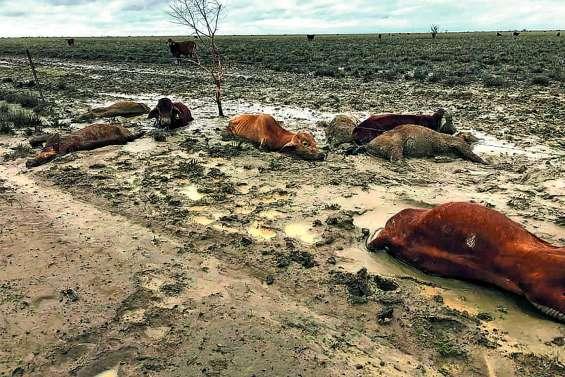 Une grave crise agricole annoncée