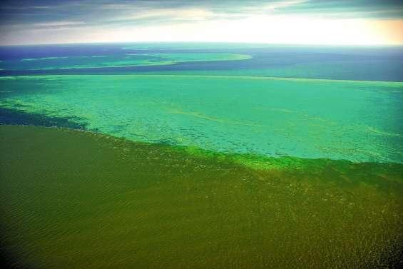 Australie : après les inondations, les sédiments menacent