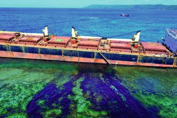 Début de marée noire : des experts néo-zélandais envoyés
