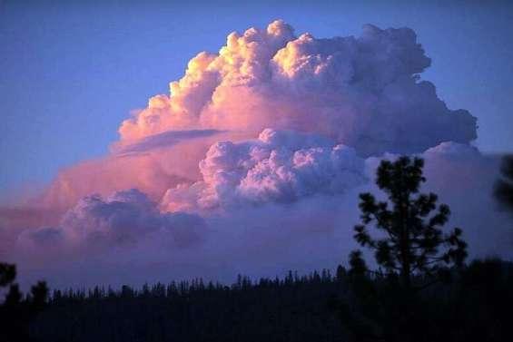 Le sud du pays en proie à de violents feux de forêt