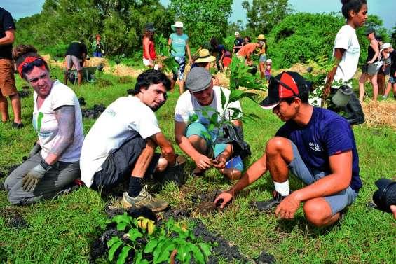 750 nouveaux arbres plantés sur le domaine de Déva