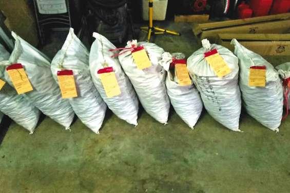 Un laboratoire clandestin de kava démantelé à Dumbéa