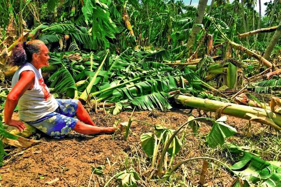 Plus de 300 millions d'aide aux agriculteurs victimes d'Oma