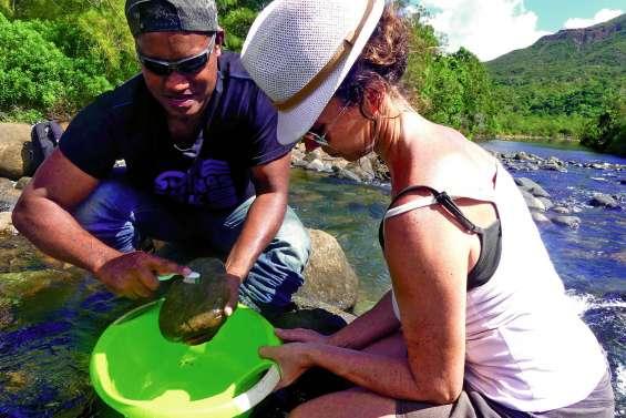 Quand les microalgues révèlent l'état de santé de nos rivières