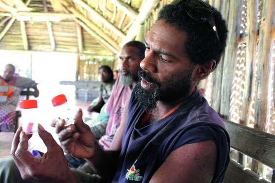 Banutr déclare la guerre à l'insecte tueur de cocotier