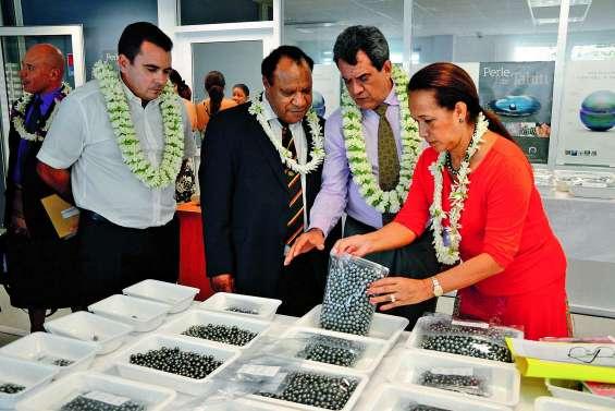 Perle de Tahiti :la filière broie du noir