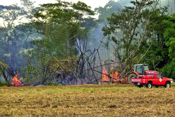 Feu de bambounière à La Foa : des pétarades en série