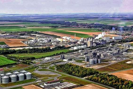 Le secteur sucrier en pleine déconfiture