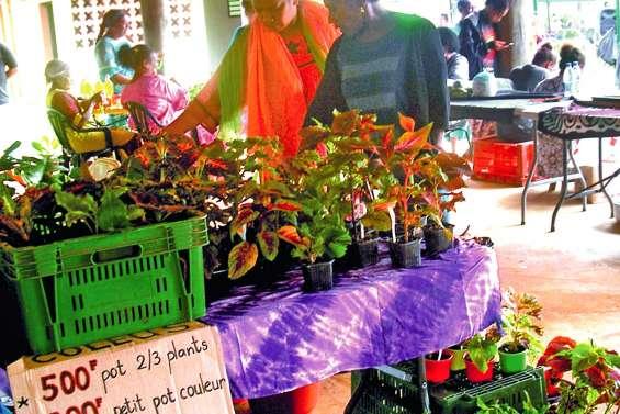 Poro a accueilli son premier grand marché