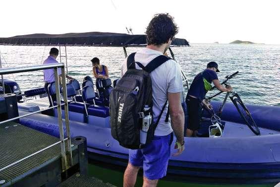 Navettes maritimes : horaires inchangés