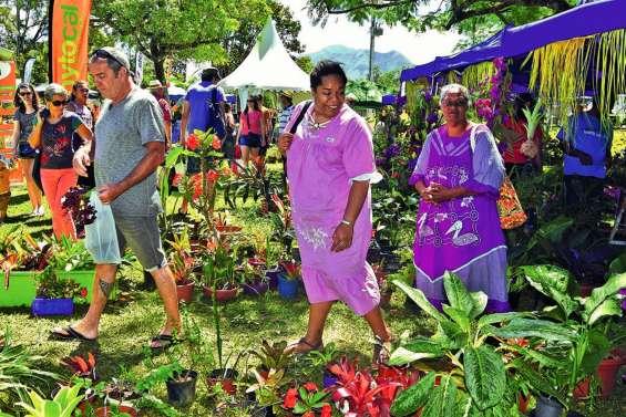 Les places s'arrachent pour le 4e Salon nature et jardin au parc Fayard