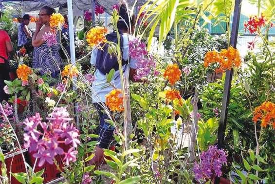 « Un monde en couleur »  au Salon de l'horticulture
