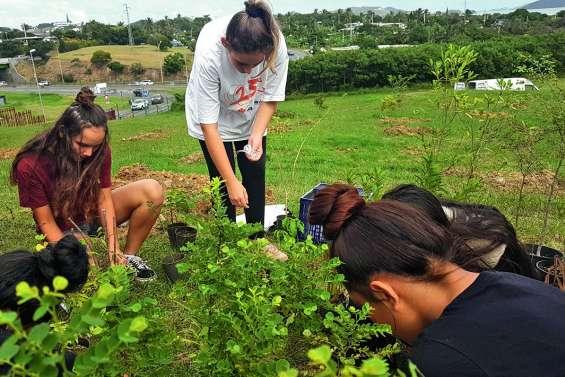 70 arbres plantés au lycée du Grand Nouméa