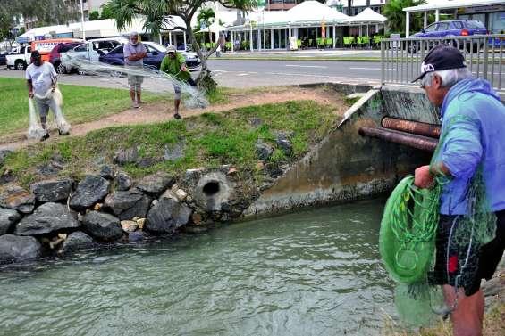 Les pêcheurs à l'épervier sont de sortie devant l'arroyo