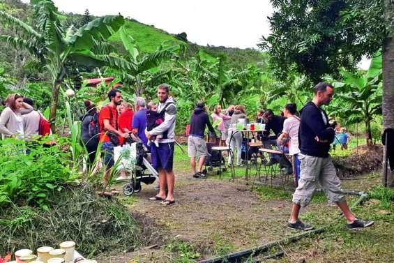 Cueillette et produits écologiques en bord de rivière