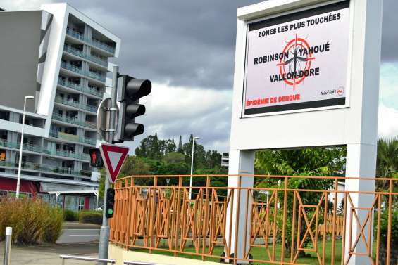 325 cas de dengue sur la commune depuis le 1er janvier