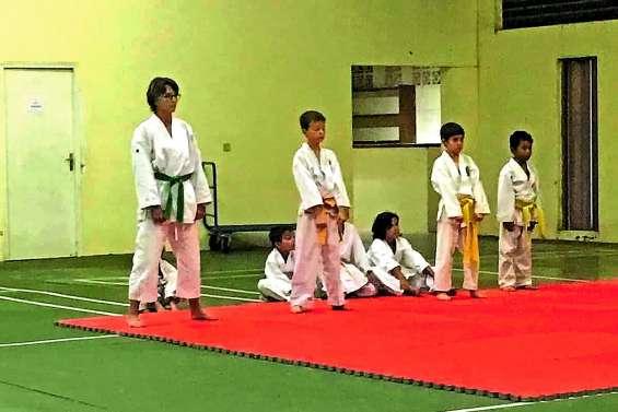 Passage de ceinture et assemblée générale au Pouembout karaté club