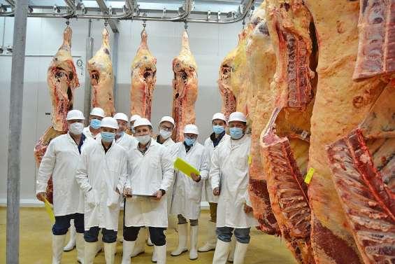 L'Ocef a sélectionné ses plus belles carcasses pour la Foire de Bourail