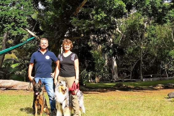 Une journée du chien et une randonnée canine pour promouvoir la stérilisation