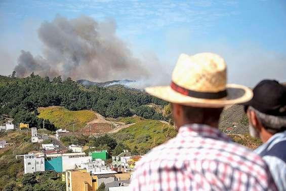 « Drame environnemental » à Grande Canarie, ravagée par un incendie