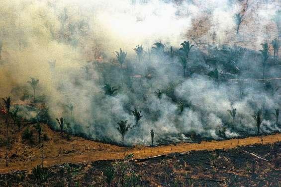 Le Brésil entre en action contre les incendies