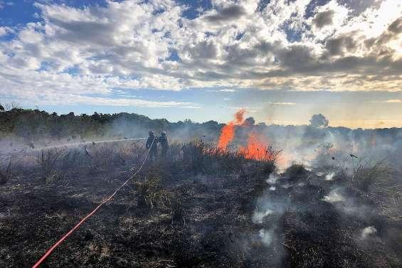 Une série de conférences sur les feux de brousse