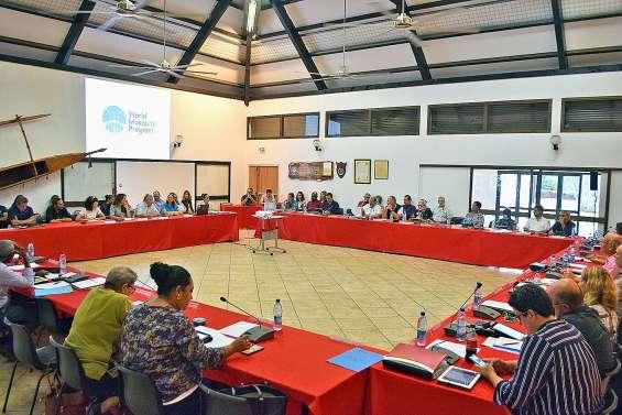 Le projet Wolbachia présenté au conseil municipal