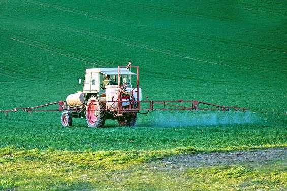 Pesticides : des distances de protection