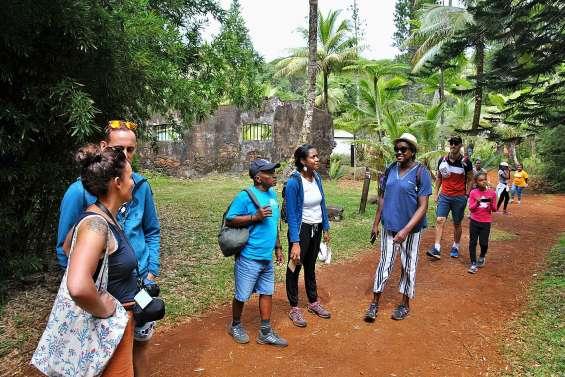 Au village de Prony, sur les traces  des premières exploitations forestières