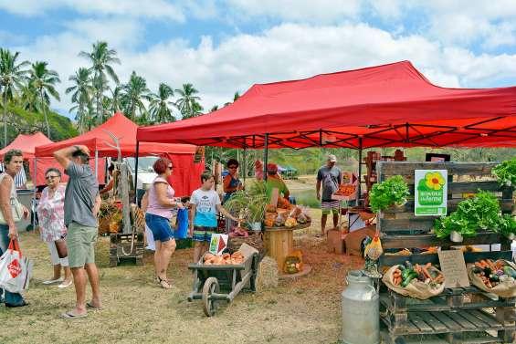 Le marché paysan s'installe à la ferme de la Ryawa