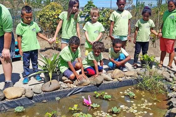 Un « jardin du bien-être » inauguré  à l'école catholique de Dumbéa-sur-Mer