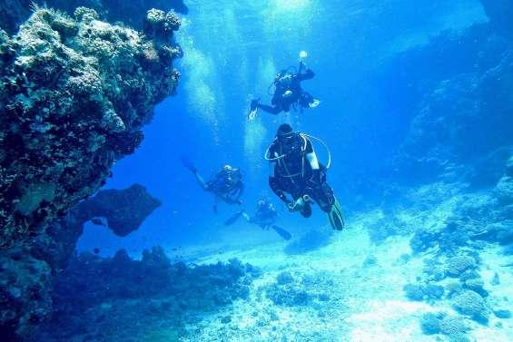 Amédée Diving fermé 6 mois pour de « graves manquements »