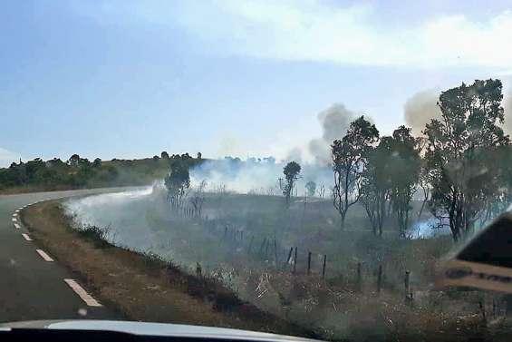 Un incendie coupe la RT1 et menace des habitations à Moindou