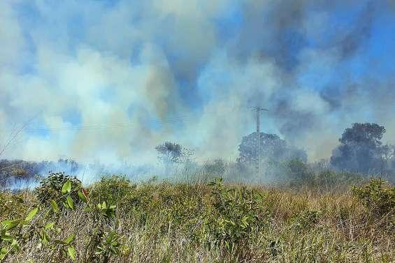 Les Cigales subissent encore les flammes