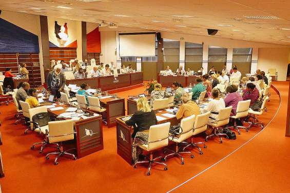 Les restrictions budgétaires votées dans la division au congrès