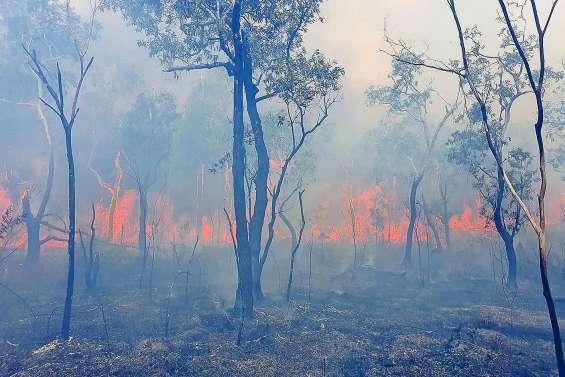 Les incendies continuent de ravager le pays