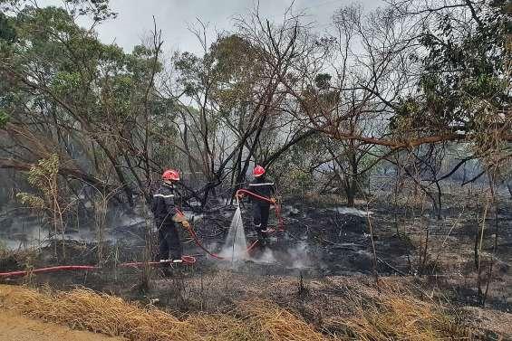 Le plateau de Tango brûle, les pompiers  sur le pied de guerre